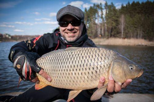 Какая рыба водится вКостромской области