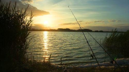 Где самые рыбные места в Люберцах