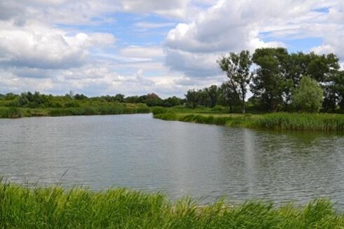 Рыбалка на реках в Тамбовской области