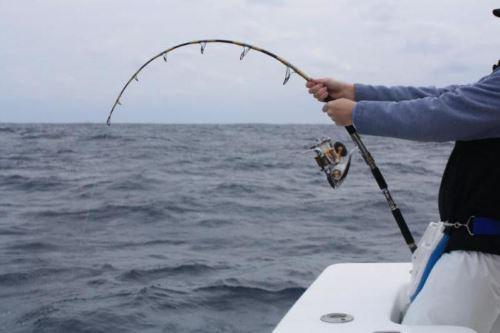 Спиннинг для ловли с лодки