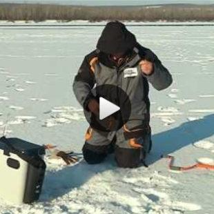 Видео о ловле судака и голавля на балансир