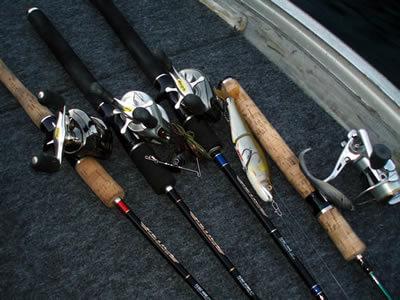 fishhungry развод видео