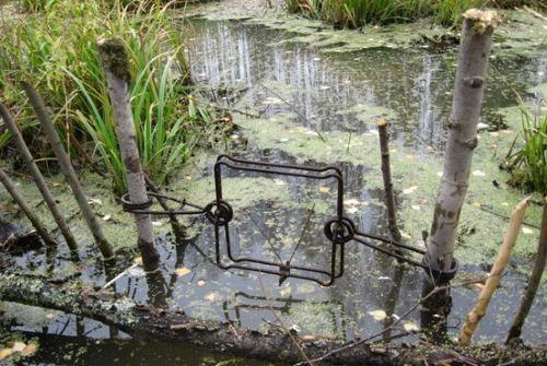 Где и как устанавливать проходные капканы на бобра на каналах