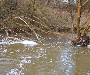 Ловля весной на реке