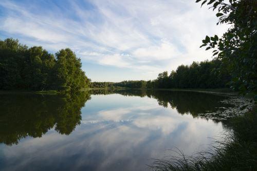 Выбор места ловли карася поплавочной удочкой