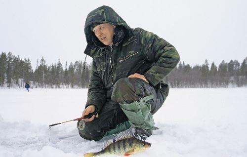 Зимняя рыбалка на хищника в Заполярье